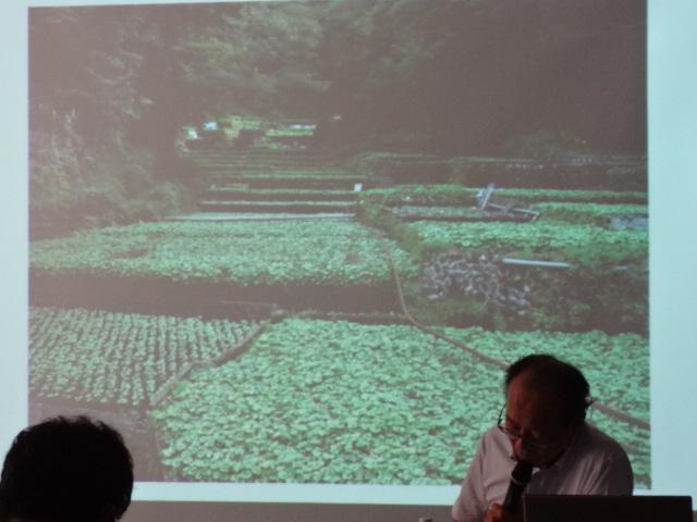DVD:農家の相続・農地の評価・生産緑地問題・造成費・庭園設備の評価